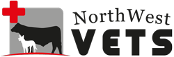 NorthWest Vets Logo